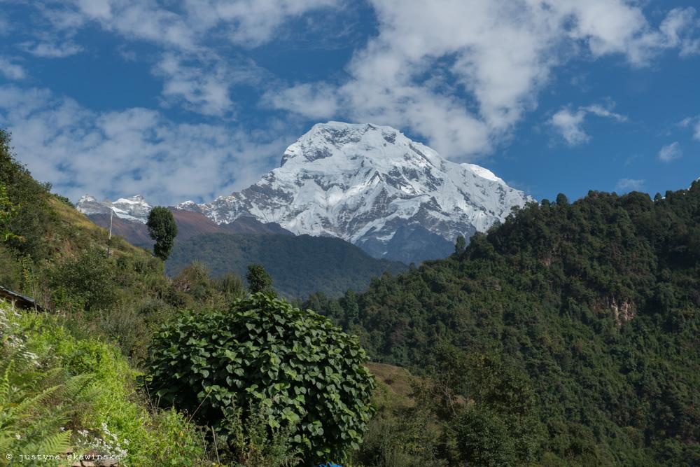 Annapurna 2019-1041